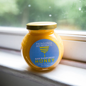 Chilean Rainforest Honey